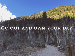 Own your day
